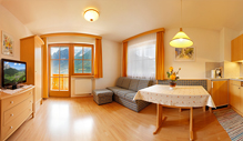 Apartment at the Hotel Biovita in in the Southtyrolean Mountains